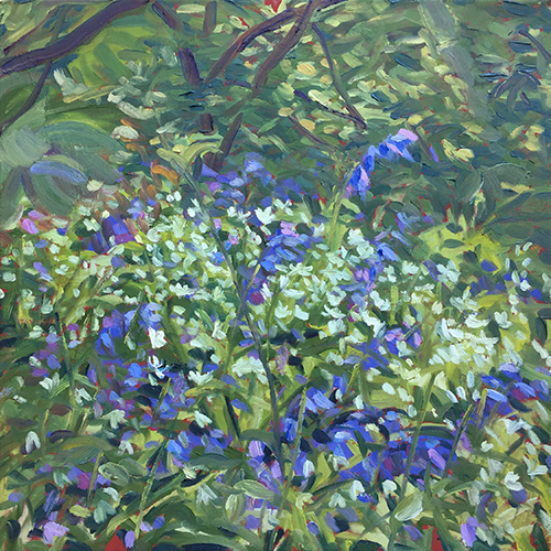 Bluebells and Wild Garlic May 2017 by Stuart Nurse