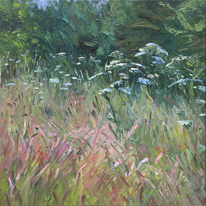Grasses near Pensford, June 2018 by Stuart Nurse