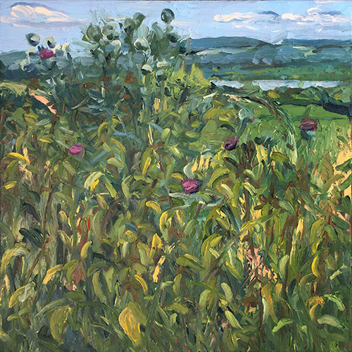 Nettles and Thistles, June 2018 by Stuart Nurse