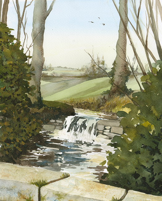 Stream at Great Chalfield by Julia Vaughan